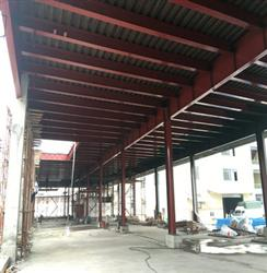 Steel structure plant design has what features